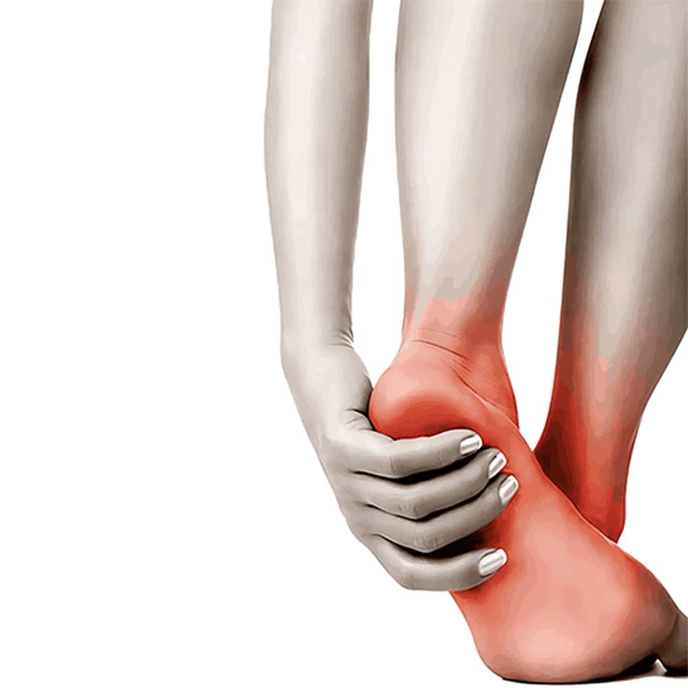 foot circulation